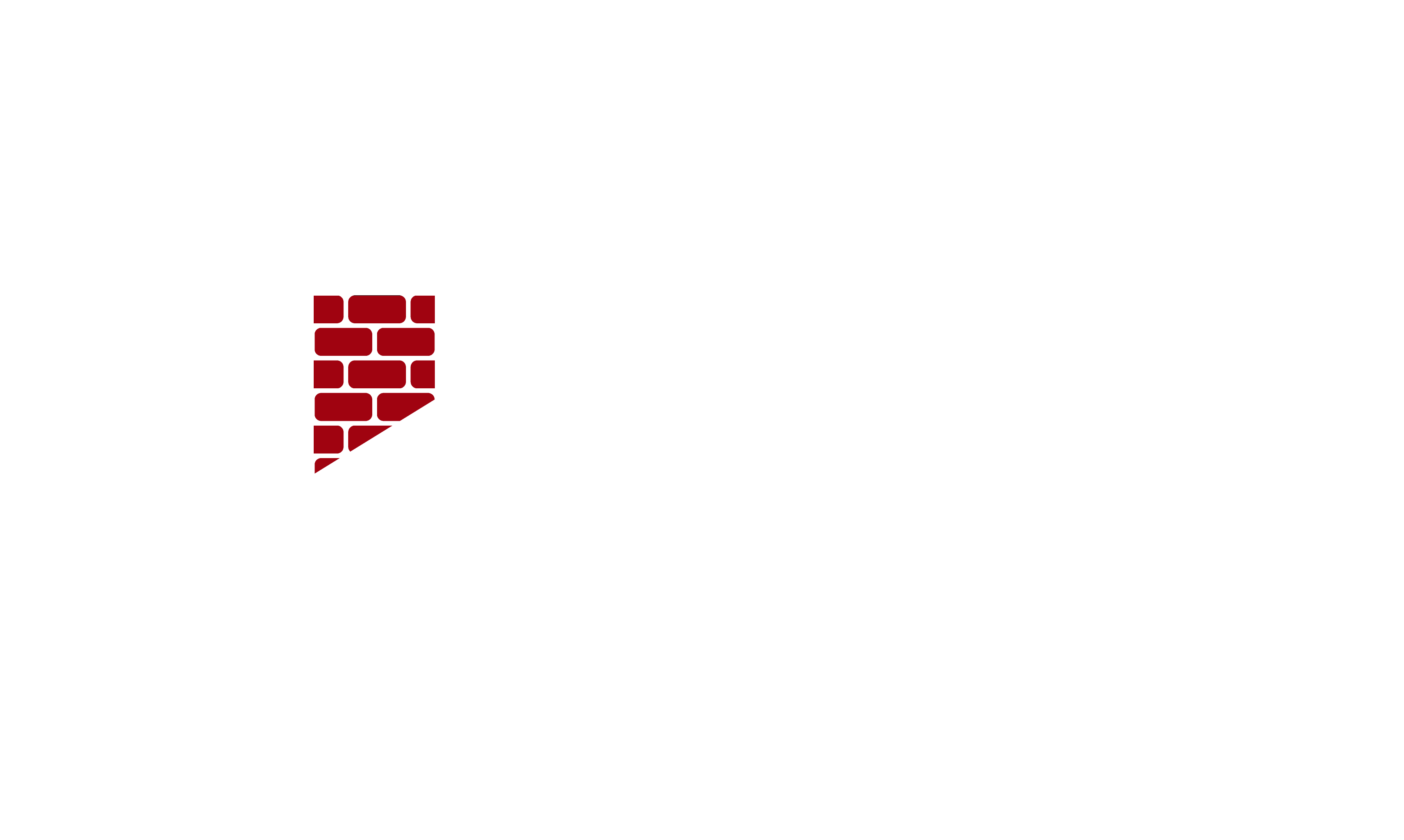 TJs-chimney-logo-wht